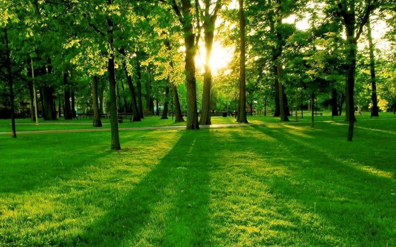 Ley de Cambio Climático y transición energética. Aspectos principales